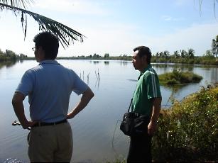 ブラックタイガー養殖池